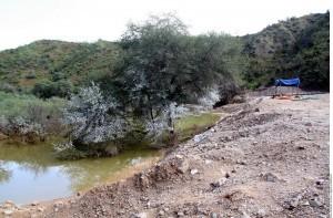 Hace apenas unos días los afluentes del Río Sonora se contaminaron por filtraciones en los represos de operación minera en Cananea. Foto: Agencia Reforma