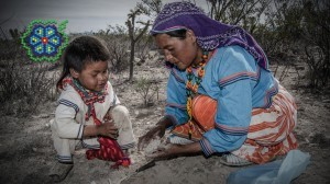 """""""Huicholes: Los Útimos Guardianes del Peyote"""" tendrá proyecciones en cuatro ciudades de Arizona. Foto: Cortesía"""