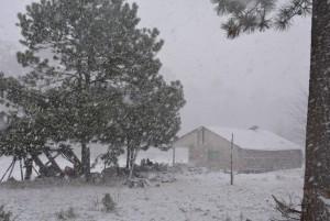 la caída de nieve o aguanieve en zonas montañosas con alturas superiores a los dos mil metros en Sonora, Chihuahua, Durango, Coahuila y Zacatecas. Foto: Notimex