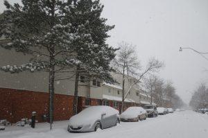La nieve estará acompañada de hielo, que en casos como Little Rock Arkansas se anticipa alcance una acumulación de hasta media pulgada. Foto: Notimex