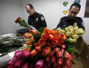 Flores como rosas, claveles y margaritas si son admitidas en EU y son las más comunes que la gente compra. Foto: AP