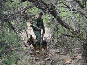 Los agentes de la Patrulla Fronteriza utilizan toda clase de apoyo para su labor diaria de la vigilancia en el desierto. Foto: Sam Murillo/Mixed Voces.