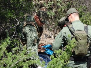 Además de las altas temperaturas los inmigrantes se enfrentan a los animales salvajes y a las bandas de contrabandistas y traficantes de personas. Foto: Sam Murillo