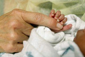 Early Head Start brinda servicios sobre crecimiento y desarrollo del niño, salud mental, nutrición y salud en general. Foto: AP