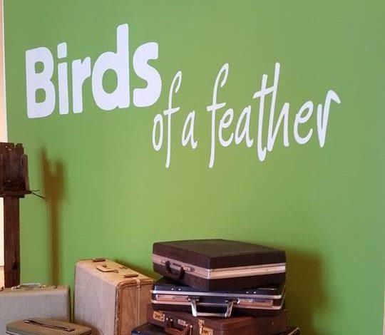Muestra celebra la belleza de las aves en Arizona