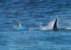 En esta imagen suministrada por la Liga Mundial de Surf, el surfista australiano Mick Fanning es perseguido por un tiburón durante una competencia en Jeffrey's Bay, Sudáfrica, el domingo, 19 de julio de 2015.  (W orld Surf League via AP)  MANDATORY CREDIT   FOR ALL ONLINE USE PLEASE INCLUDE A LINK TO WORLDSURFLEAGUE.COM.