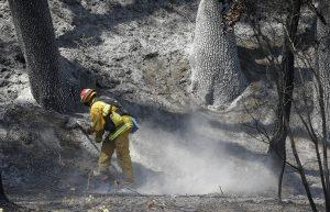 En el estado de Washington, en la esquina noroeste del país, los cielos nublados y la humedad elevada han ayudado a los bomberos a cercar un incendio en el condado de Lewis. Foto: AP