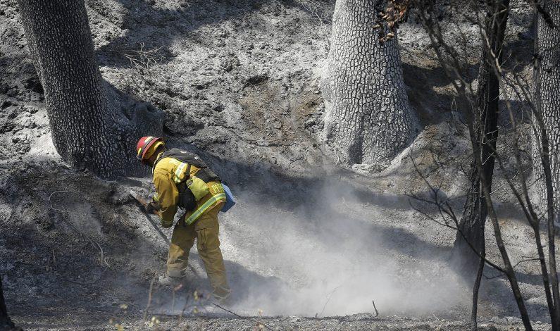 Arden incendios en varios estados del occidente del país
