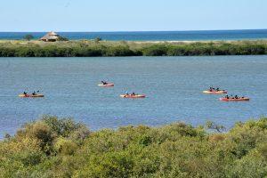 En la laguna El Estero del Soldado,  se pueden realizar actividades ecoturísticas de miércoles a domingo, en total armonía con la naturaleza. Foto: Notimex