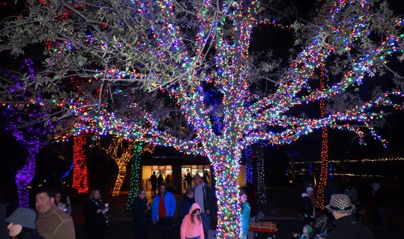 Llega la Navidad al Zoológico de Phoenix