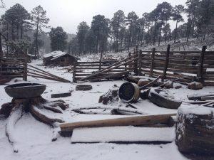 Para las próximas horas se pronostica la caída de nieve o aguanieve sobre las zonas montañosas de Chihuahua y Durango. Foto: Notimex