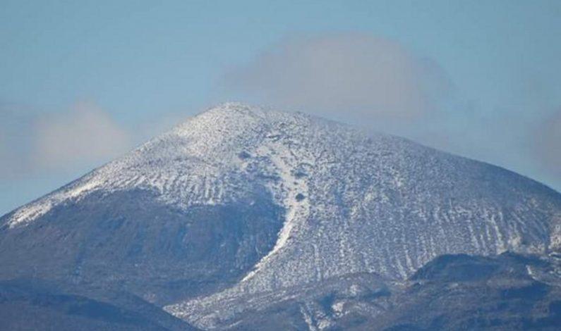 En Sonora, 20 municipios atienden emergencia por helada severa