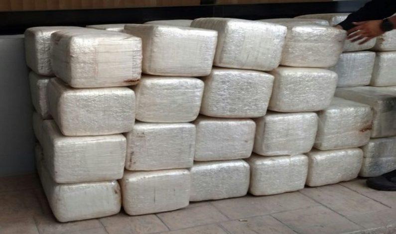 Aseguran 251 kilos de mariguana y detienen a dos personas en Sonora